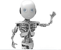 wp robot plugin